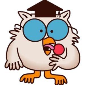 mr-owl